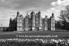 Spring Daffodils, Burghley House,Lincolnshire