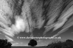 Cotherstone Moor, Upper Teesdale, Durham