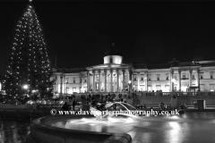 Christmas Tree Illuminations, Trafalgar Square
