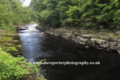The river Tees, Barnard Castle, Upper Teesdale, Durham County, England, Britain, UK