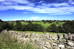 Landscape view over Blackton village, Upper Teesdale, Durham County, England, Britain, UK