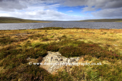 Spring, February, March, Landscape view over Cow Green Reservoir, Teesdale, Durham County, England, Britain, UK