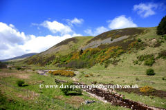 Blackseat Hill, Scald Hill, The Cheviot Hills