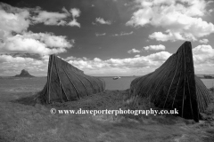 Upturned Herring Boats at Lindisfarne