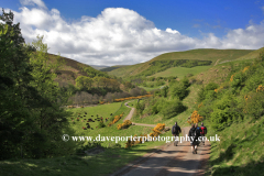View to the Happy Valley, The Cheviot Hills