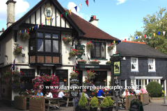The Mailmans Arms Pub, Lyndhurst town