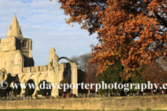 Autumn, Crowland Abbey, Crowland