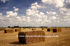Straw bales in Fenland fields, Spalding