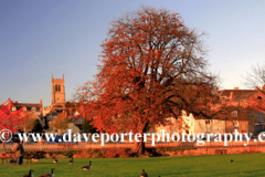 Stamford Meadows and Stamford churches