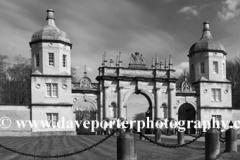 Daffodils, Bottle Gate, Burghley House, Stamford