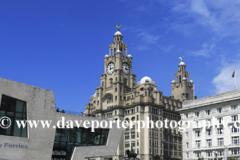 Royal Liver Building, George's Parade, Pier Head, UNESCO World Heritage Site, Liverpool, Merseyside, England, UK
