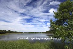Summer, Filby Broad, Norfolk Broads, Broads views, Norfolk, England, UK