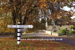 Autumn chestnut tree, Duddington village, Northamptonshire, England, UK
