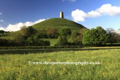 Summer, Glastonbury Tor, St Michael's Tower, Somerset Levels, Somerset County, England, UK