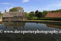 Summer, village pond at East Quantoxhead village, Somerset, England.