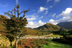 View to Rannerdale Knotts, Crummock Water