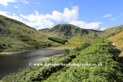 Summer view to Harter fell and Haweswater