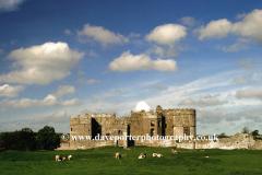 Carew Castle, Carew Village, Pembrokeshire