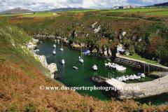 Fishing Boats at Porth Clais, Pembrokeshire