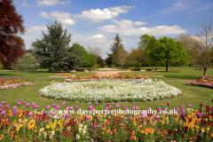 Spring flowers in St Nicholas Park, Warwick town