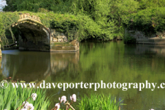 Warwick Castle Bridge, River Avon