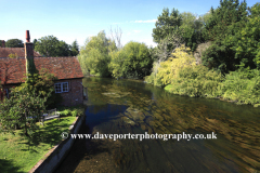 The River Nadder, Salisbury City