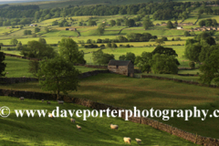 Bainbridge pastures; Bainbridge village, Wensleydale