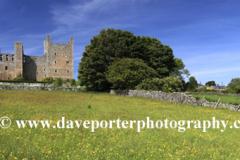 Flower meadow and Castle Bolton Castle; Wensleydale