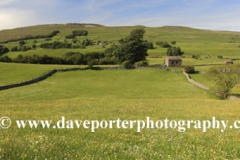 View over flower meadow, Raydale, Yorkshire Dales