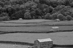 Stone barns at Feetham village, Swaledale
