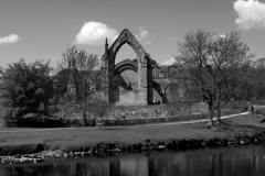 The ruins of Bolton Abbey Priory, near Skipton