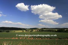 Summer landscape fields near Winchcombe
