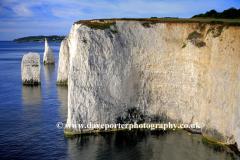 The Pinnacles Seastacks, Swanage Bay, Jurassic coastline, Dorset; England; Britain; UK