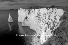 The Pinnacles Seastacks Swanage bay, Jurassic coastline, Dorset; England; Britain; UK