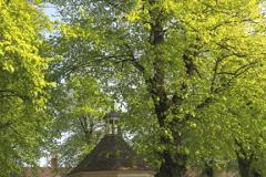 Summer view of the village green in Harrold village