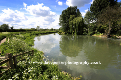 The Riddy nature reserve, river Ivel, Sandy town