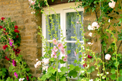 Cottage Window, Helpston village, Cambridgeshire England UK