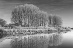 Hoare frost winter scene, river Welland, Peakirk village, Cambridgeshire, England; Britain; UK