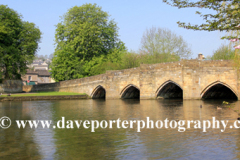 Cherry Tree Blossom, river Wye, Bakewell