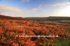 Autumn View to Houndkirk Moor near Hathersage