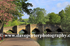 Cherry Tree Blossom, road bridge, river Wye, Bakewell