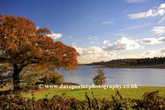 Autumn view over Ogston Reservoir