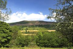 Summer view to Bamford Edge