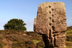 The Cork Stone on Stanton Moor