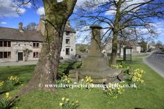 Daffodils and the War Memorial, Monyash village