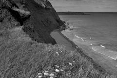 Ironstone cliffs at Orcombe Point, Jurassic coast