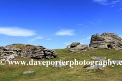Summer, Haytor Down, Haytor Rocks, Dartmoor