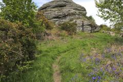 Blackinstone Rock near Moretonhampstead village
