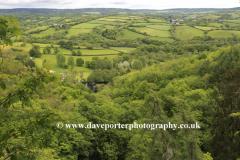 Summer, river Teign valley near Teign village