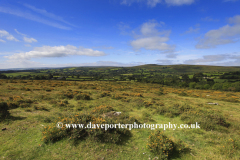 Challacombe Down and surrounding Moors